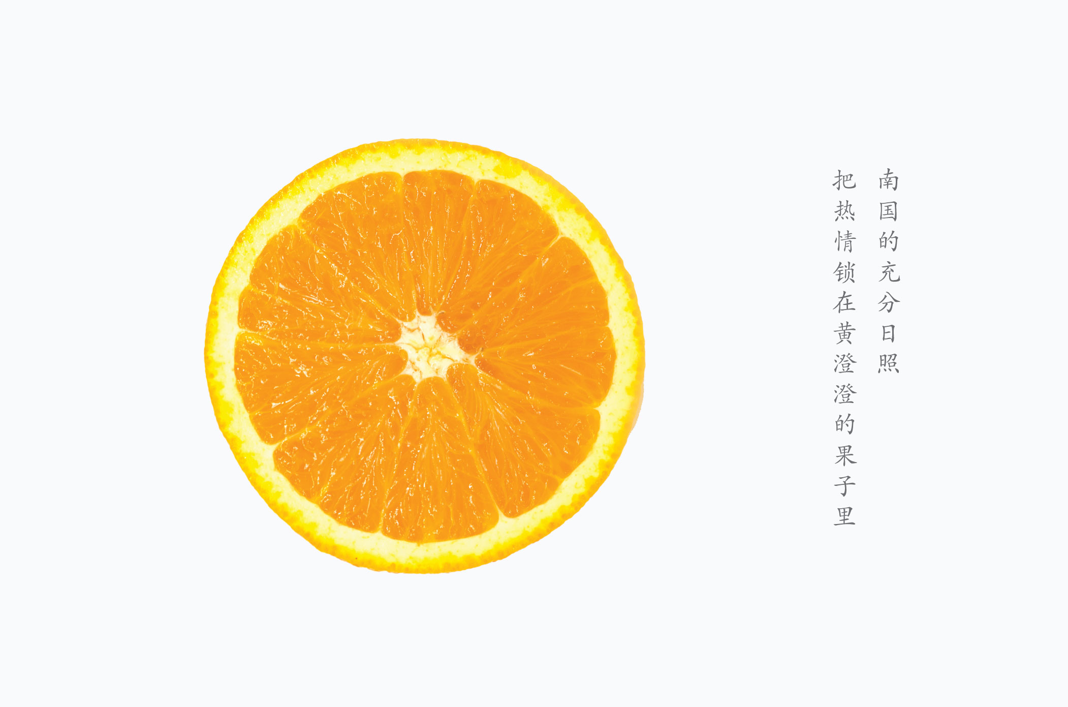 日光香橙 Orange Cool Cheese 08